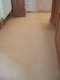 Carpet cleaning Consultation and quotation | Martins ...