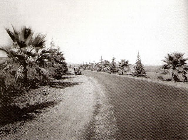 Beverly Drive south of Sunset Boulevard, 1916