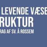Nyt historisk foredrag Sv. Å. Rossen på martinusforumdk