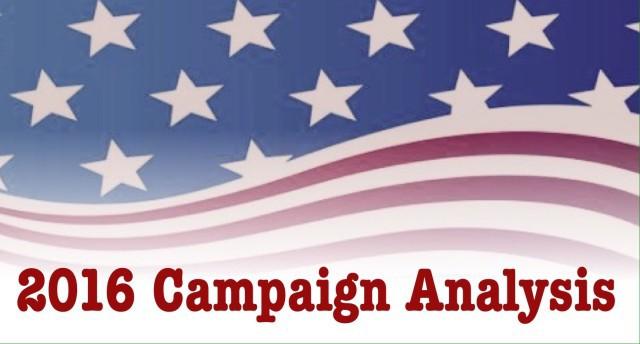 campaign analysis larsen