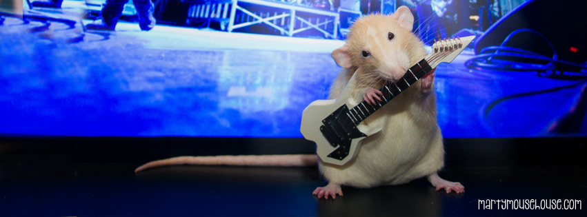 guitar_marty