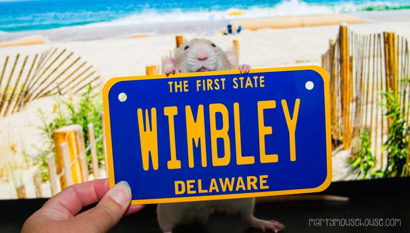 wimbley_DE