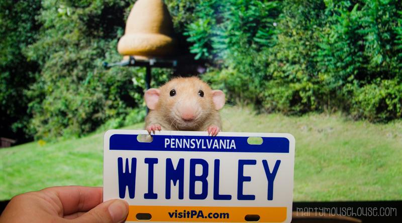 wimbley_PA