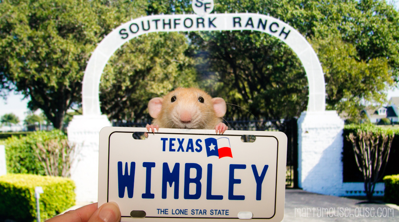 wimbley_texas