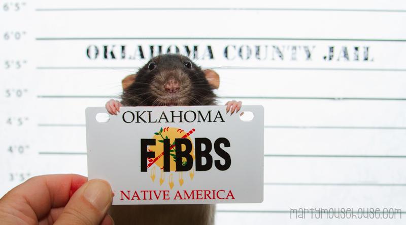 OK_fibbs1