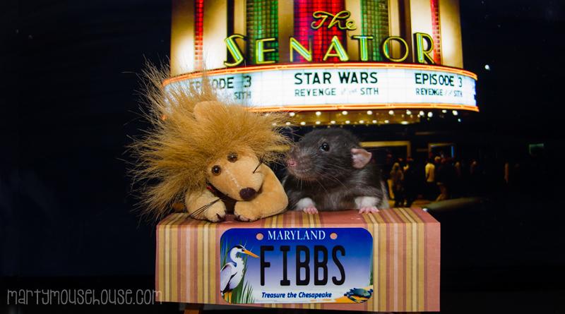 fibbs_MD2