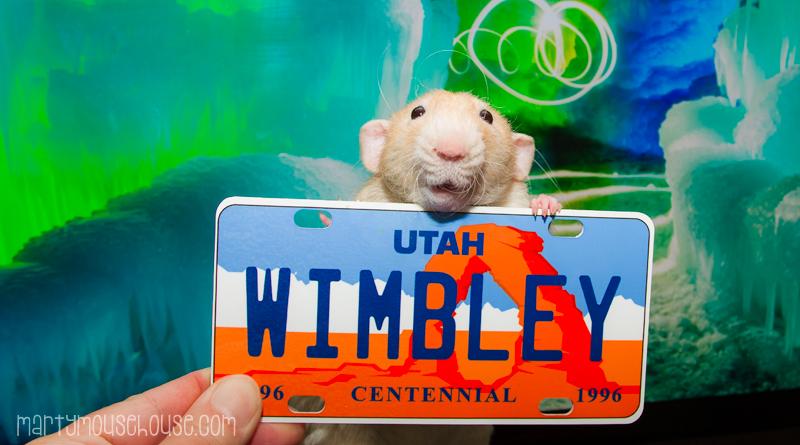 wimbley_UT