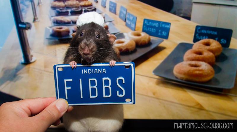 IN_fibbs