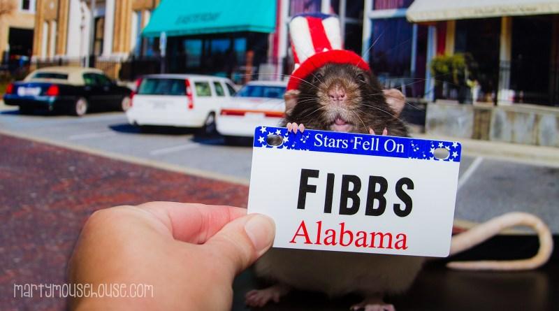 al_fibbs