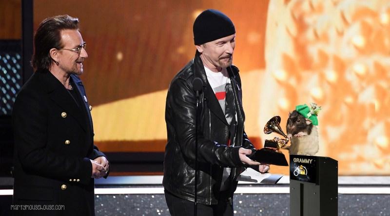 Fibbs Sweeps the Grammys!