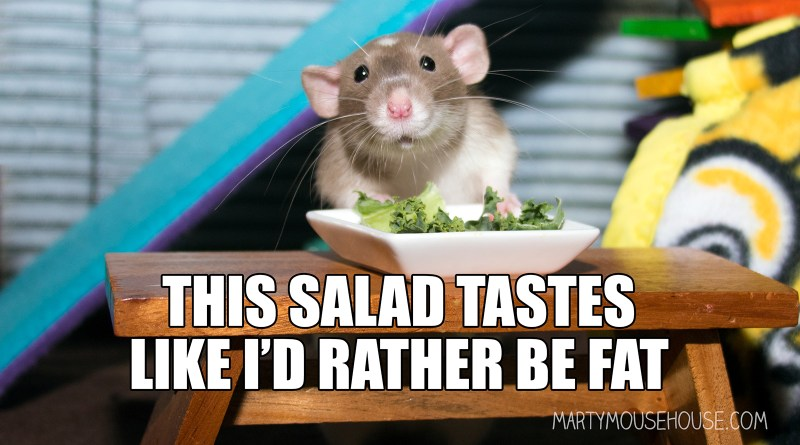 This Salad Tastes like I'd rather be fat