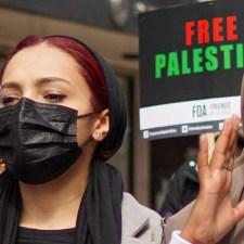 FAQ: Die Linke und die Palästina-Solidarität