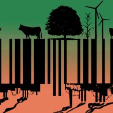 Konsumkritik: Mit bewusstem Konsum das Klima retten?