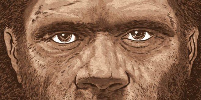 Sapiens, uma breve história de mistificações (Parte 2)
