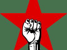 پروگریسو یوتھ الائنس: پس منظر، تعارف، منشور اور دستور