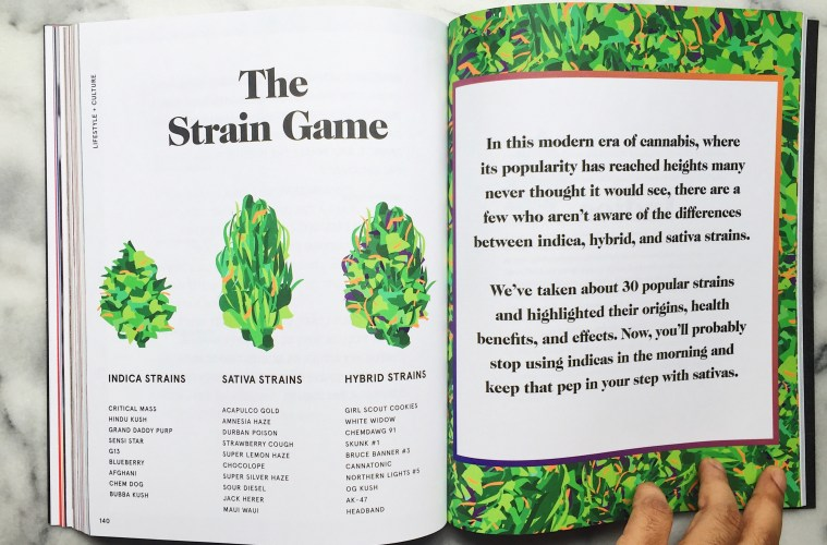The Strain Game - Our Guide To Popular Strains - MARY