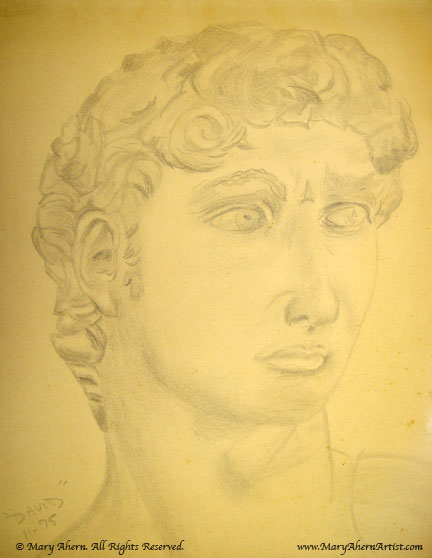 In my first college level drawing classes we drew from plaster casts of famous sculptures