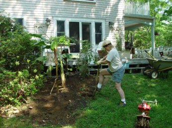 2002-05 Mary planting her tropical garden