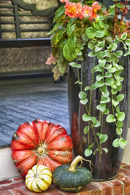 Festive and colorful fall decorations.