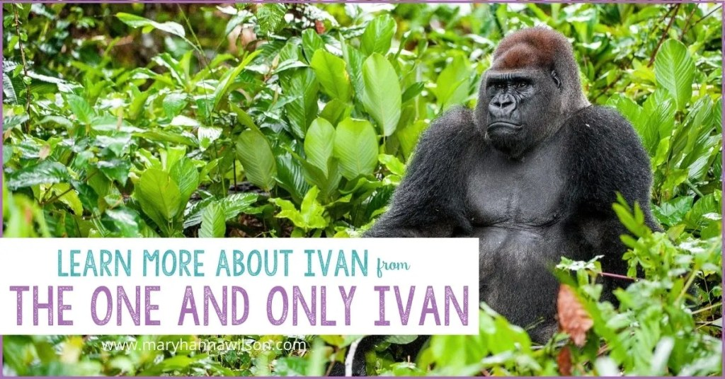 One and Only Ivan Learning Resources