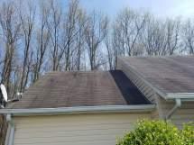 Roof Cleaning Algae Mildew & Black Streak Removal