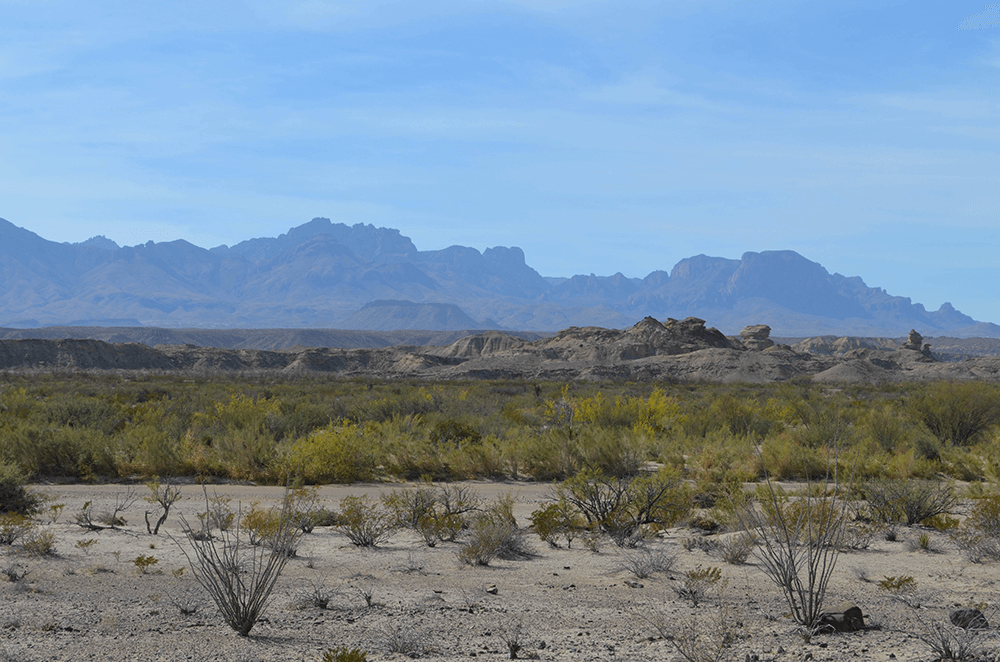 Two Days in Terlingua and Big Bend National Park 14