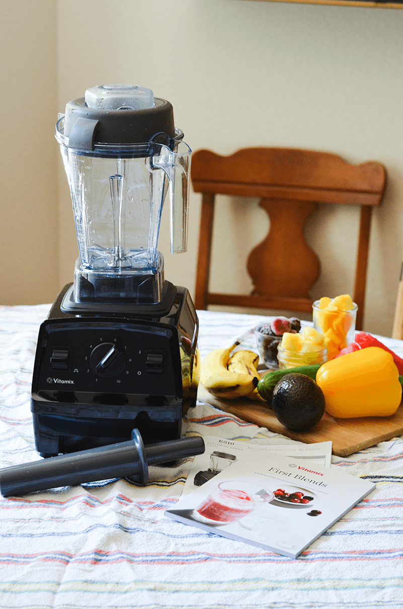 Vitamix E310 Explorian Series Blender
