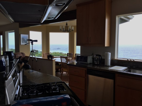 All the windows on the back side of the house face the ocean.