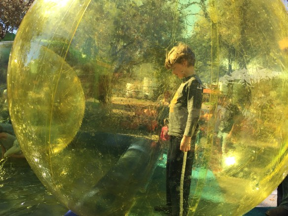 Sam in the bubble