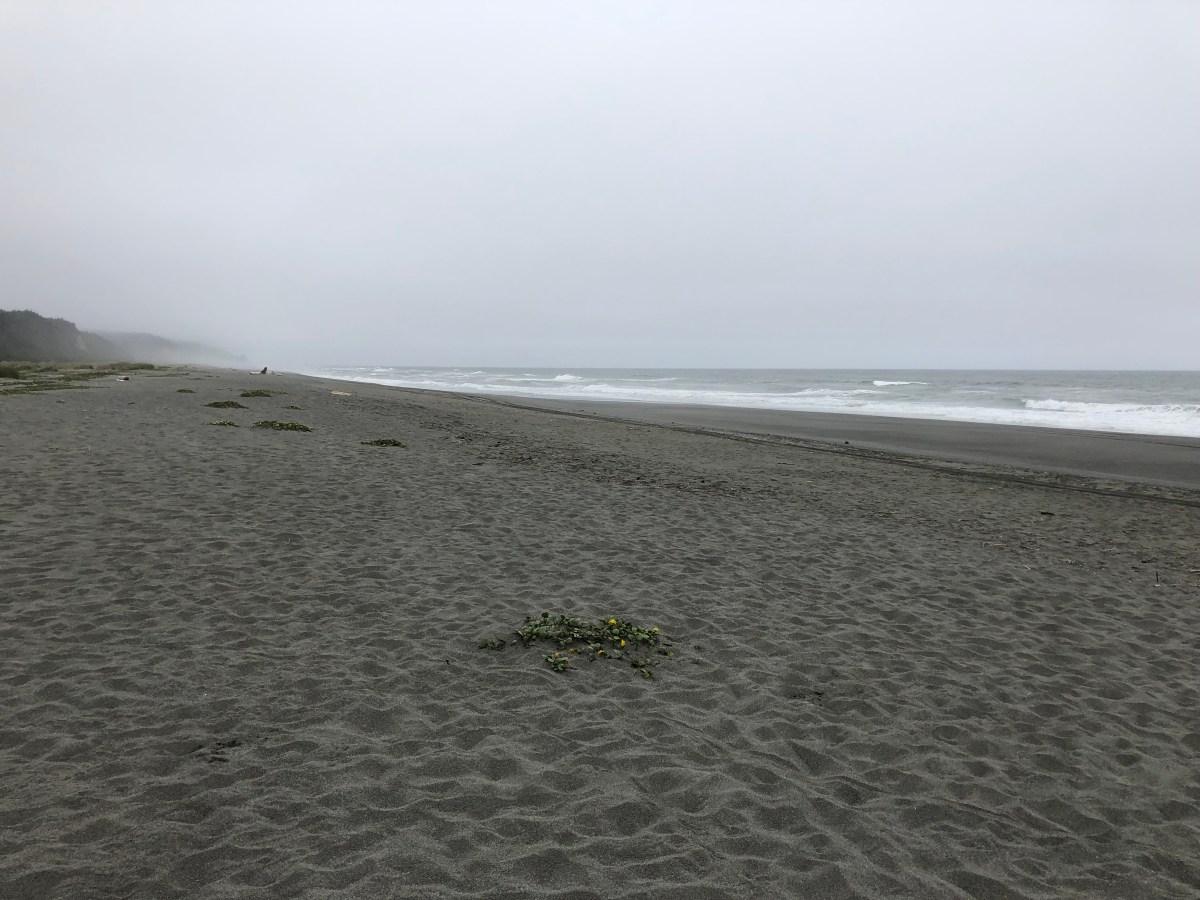 More fun on the NorCal coast. 6/14/19
