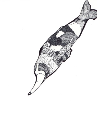 "River Dolphin // 10"" x 8"""