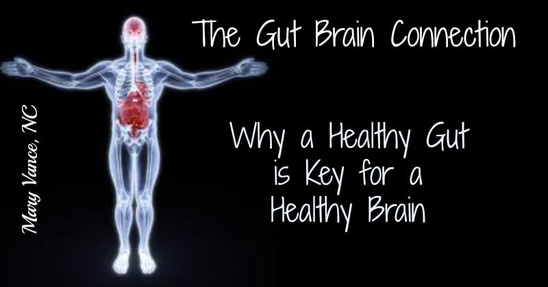 Gut Brain Connection: Why a Healthy Gut is the Key to a Healthy Brain & Happy Mood