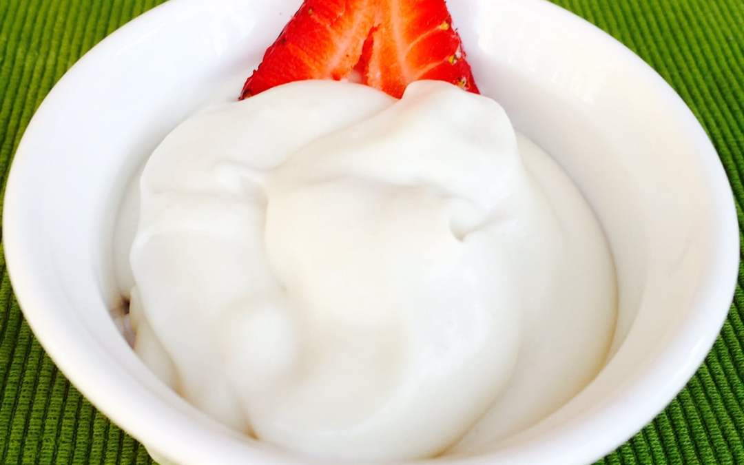 EASY: How to Make Homemade Coconut Milk Yogurt