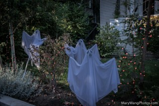 Ghosts in yard