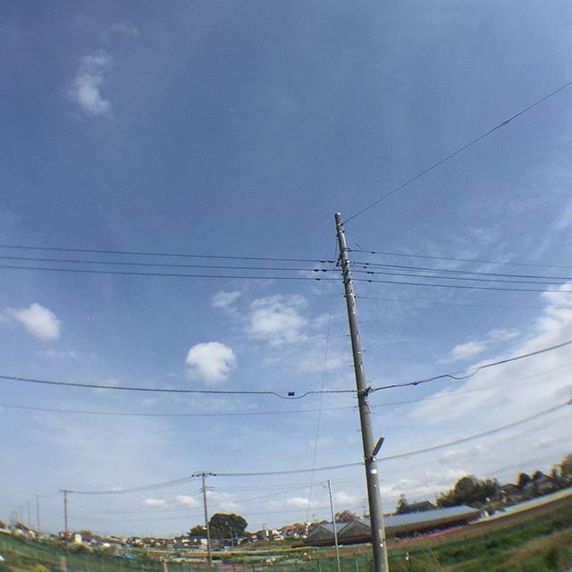 風は強いけど、雲は少なくなって来たよ。