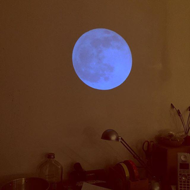 カウンター脇にも月