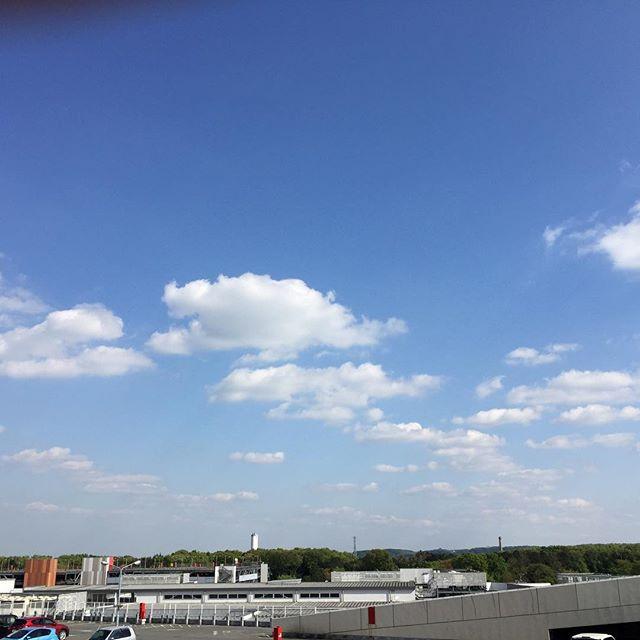 空が広いなぁ