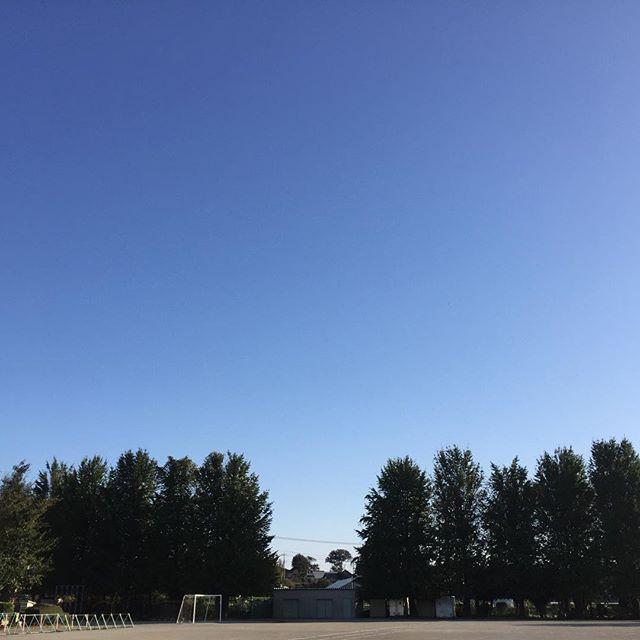 今日はスッキリ秋晴れ。 地元の集まりで小学校の校庭に。