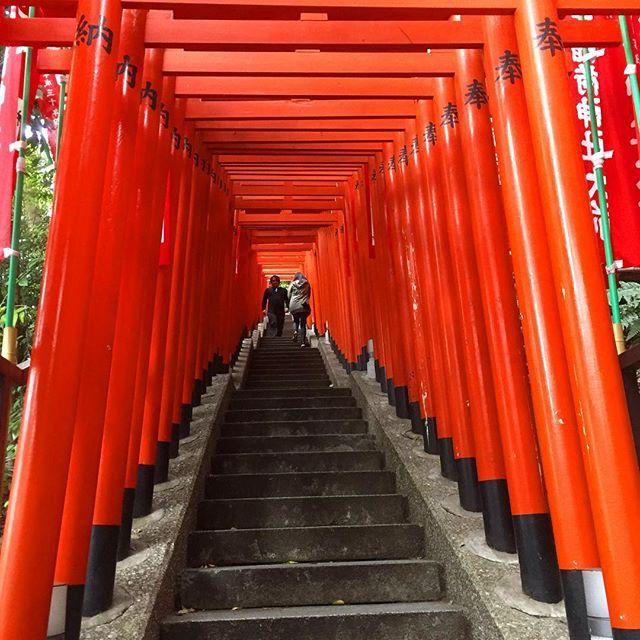 昨日は泊まりの近くに日枝神社があったので、空いた時間に参拝に。 ここには狛犬のかわりに猿が安置されている。