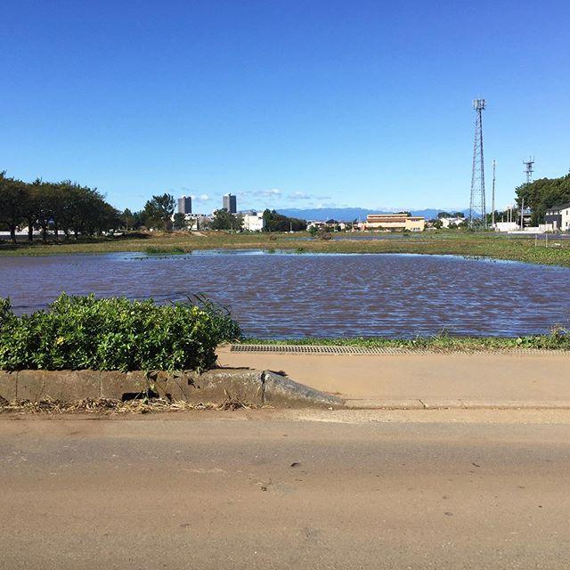 市民プールの臨時駐車場は、池になってました。