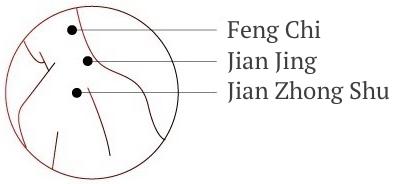 Ogawa Masaj Koltuğu Feng Chi