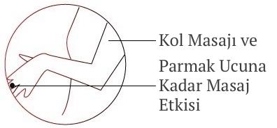 Ogawa Masaj Koltuğu Kol ve El