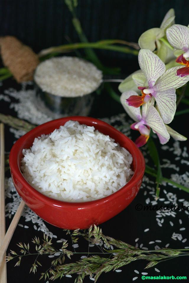 Plain rice V4