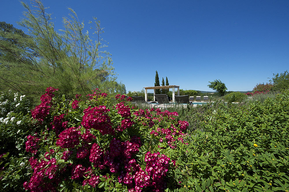 Tamaris et fleurs au bord de la piscine au Mas de la Baillyde, gîtes de charme en Cévennes