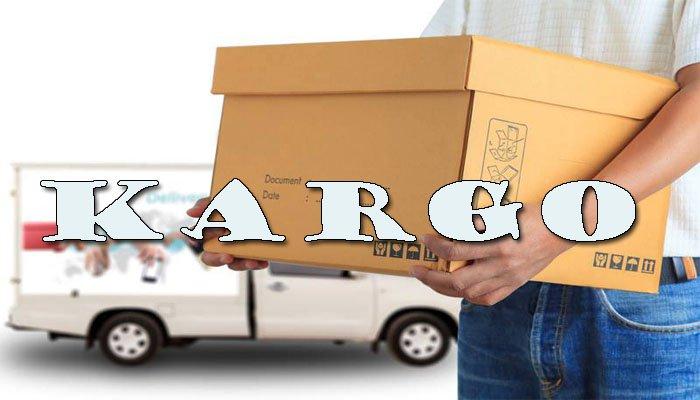 jasa pengiriman barang via udara aman