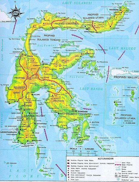 Cargo Murah Ke Kalimantan dan Sulawesi dengan Aman dan Cepat