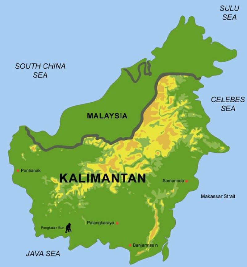 Cargo Murah Ke Kalimantan dan Sulawesi dengan pengiriman cepat