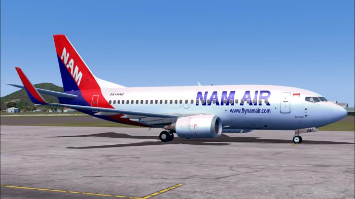 Agen Cargo Nam Air Untuk Ekspedisi Via udara