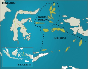 Jasa Ekspedisi Ambon Maluku terbaik