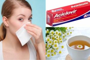 herpes en la nariz causas sintomas y tratamiento